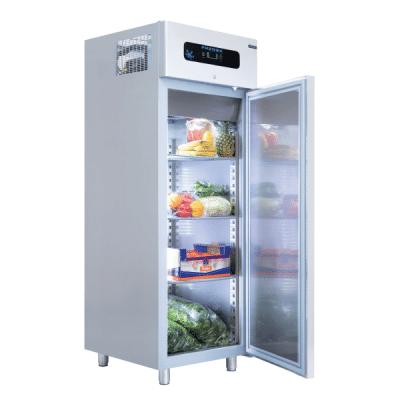 profesionalni frižider